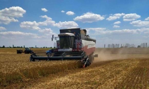Особых надежд на высокий урожай нет: в Николаевской области завершают сбор ранних зерновых и зернобобовых фото, иллюстрация