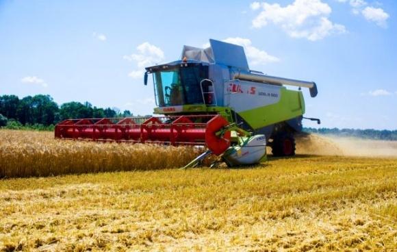 Жатва-2020: В Украине уже собрано 6,3 млн тонн зерна фото, иллюстрация