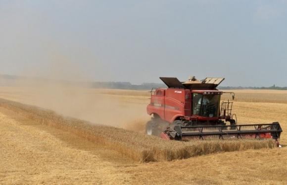 Украинские и литовские аграрии собрали больше зерна, чем белорусские хозяйства  фото, иллюстрация