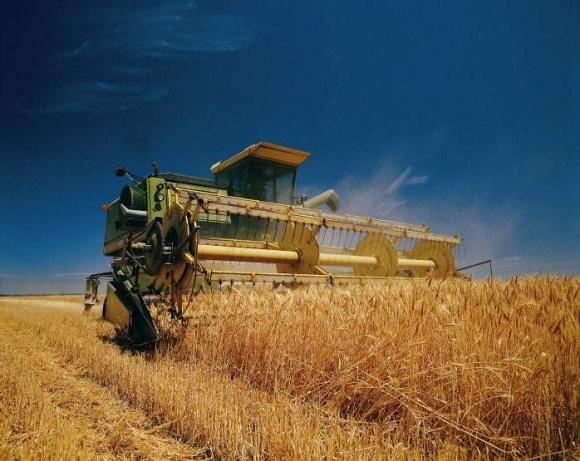 В Черкасской области урожайность ранних зерновых достигла 6 т/га фото, иллюстрация