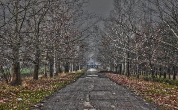 Не исключено, что через 20-25 лет зимы в Украине вообще не будет, — Кульбида фото, иллюстрация