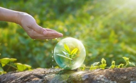 Минэкономики с участием бизнес-ассоциаций представило законопроект «О защите растений» фото, иллюстрация