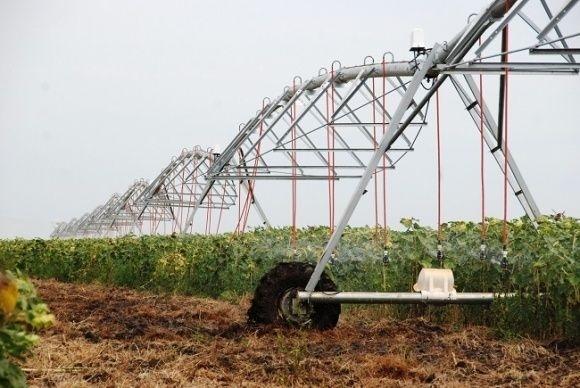 """""""Фридом Фарм Интернешнл"""" удвоила объемы приобретения дождевальных систем фото, иллюстрация"""
