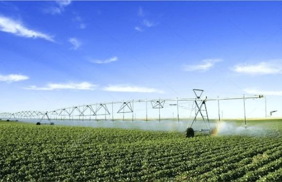 В Україні скоротять ліміти води на зрошення, – Держводагентство фото, ілюстрація
