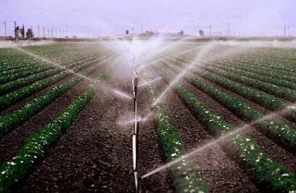 Аграрии переходят на новые технологии орошения фото, иллюстрация