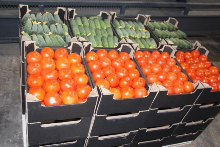овощи упаковываются в специальный гофроящик