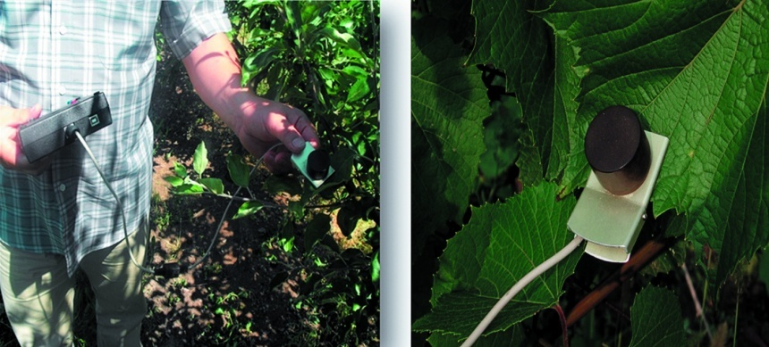 Прилад «Флоратест» у роботі (в саду)