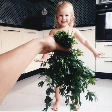 Професійне насіння