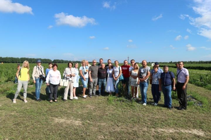 Екскурсія по ягідних плантаціях