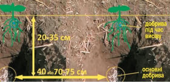 8 - Схема розміщення насіння та добрив у ґрунті за використання Strip Тill. Смуговий обробіток під час вирощування соняшнику: оброблені смуги ґрунту на відстані 45 або 70–75 см одна від одної; глибина розпушування — 20–35 см; внесення основних добрив — глибше, внесення стартової дози добрив — під горизонт посіву
