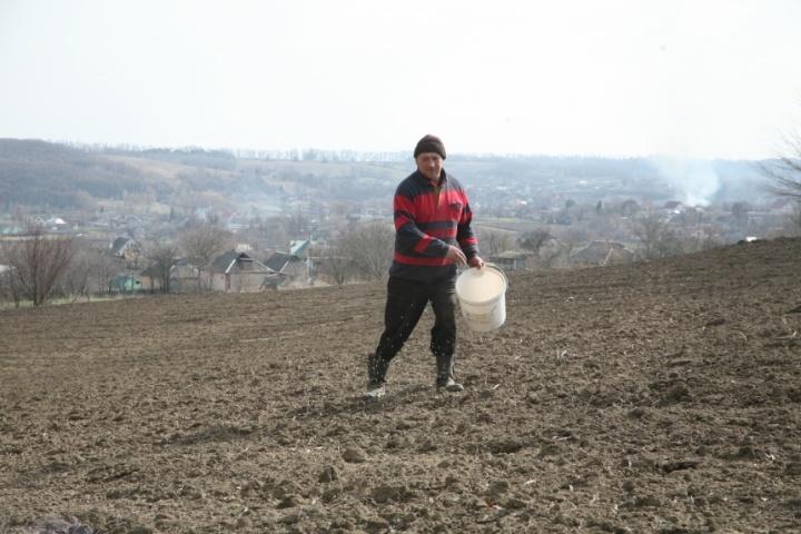Весна в селе, посев
