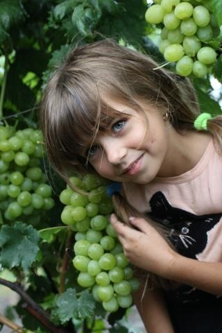 Девочка и виноград