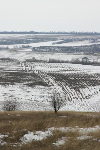 Село, зима