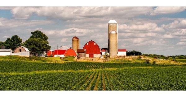 купить фермы в сша