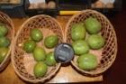 """""""Найсучасніші новації в створенні рентабельних горіхових садів. Новітні агротехнології, сорти, економіка"""""""