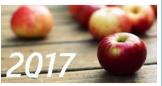 Яблучний бізнес України-2017