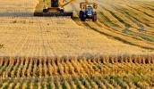 Правительство сняло ограничения на получение земли участниками АТО