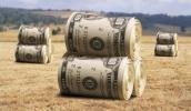 НБУ называет аграриев самыми надежными заемщиками