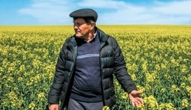 Юрій Яловчук, директор господарства «ТОВ «Колос»»