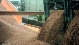 Перевалка зерна