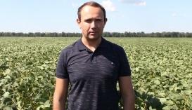"""Владимир Топалов, заместитель директора ФГ """"ТВК"""""""