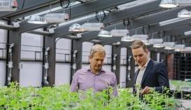 Агростартап Indigo привлек 203 млн долл. с помощью дубайского фонда