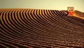 Ранее депутаты обратились в Конституционный суд относительно отмены моратория на продажу земель сельхозназначения