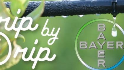 Німецька хімічна та фармацевтична компанія Bayer AG спільно з ізраїльською Netafim розробляють новий метод по догляду за врожаєм при максимально ефективній витраті води