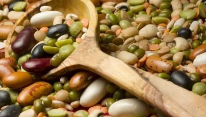 Спрос фактически стабилен на все органические полевые культуры (кроме спельты, что связано с перепроизводством данной культуры)