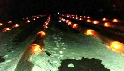 Фермеры в Одесской области спасли от апрельской непогоды рассаду дынь и арбузов с помощью свечей