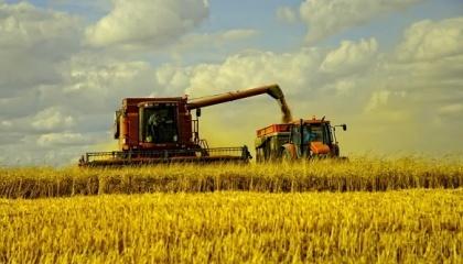 На сегодняшний день в некоторых областях арендная плата составляет 10% от стоимости земли. В итоге, некоторые культуры уже выращивать невыгодно - например, ячмень. Да и пшеница - уже на грани