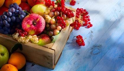 Українські виробники ягід і фруктів за підсумками міжнародної сільгоспвиставки Asia Fruit Logistiсa в Гонконзі отримали пропозиції на покупку яблук і ягід