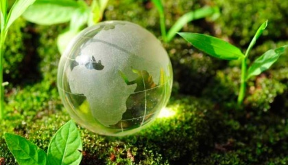 Дальнейшие перспективы развития рынка органического сельхозпроизводства на территории стран СНГ – это однозначно внутренние рынки, так как внешние для этих стран начинают активно закрываться