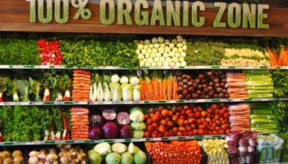 Украина следует мировому тренду: экспортеры предлагают покупателям не просто органические продукты, а продукты, которые имеют так называемую региональную идентичность, например «родом» из Карпат