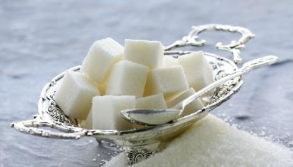 Для того, щоб підвищити ефективність виробництва цукру, гравці ринку формують вертикально інтегровані холдинги. До їхнього складу входять господарства, заводи, фасувальні потужності