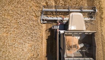 В Україні можуть запровадяти моніторинг руху зерна