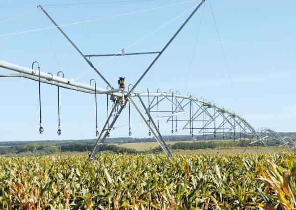 Вирощування кукурудзи на крапельному зрошенні в условиях Південного Степу України фото, ілюстрація