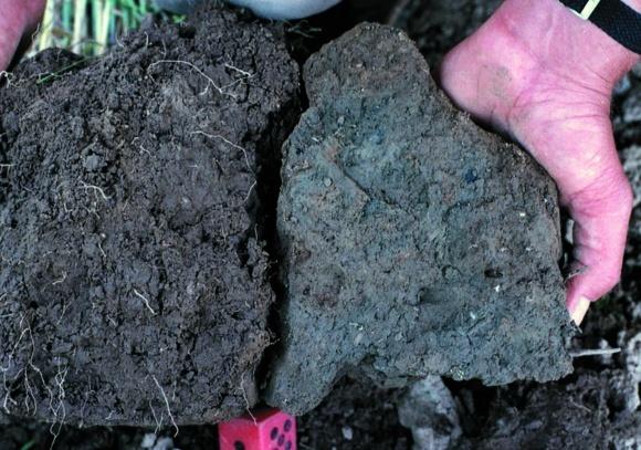 Структура почвы фото, иллюстрация