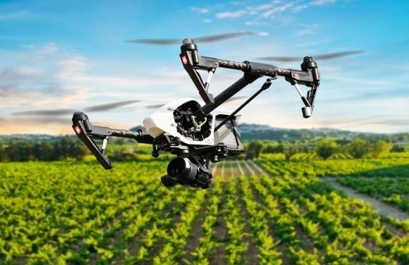 Виявлення бур'янів за допомогою дронів фото, ілюстрація
