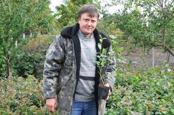 Олег Вагин: «Голубика — на порядок выгоднее и проще малины» фото, иллюстрация