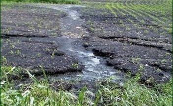 Ворует ли пахота Вашу почву? фото, иллюстрация