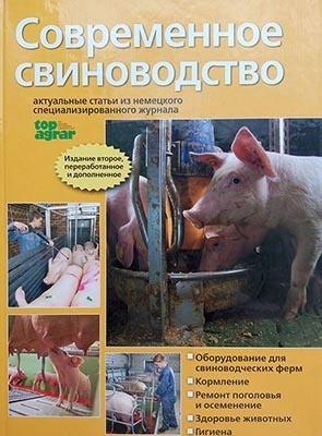 Современное свиноводство