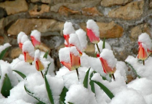 В Україні потеплішає 26 квітня фото, ілюстрація