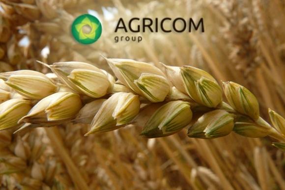 Мобільні залізничні перевезення вигідні для великих обсягів зерна, - Agricom Group фото, ілюстрація