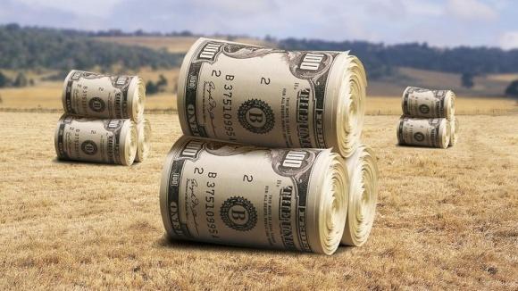 Державна підтримка цього року майже вся пройде мимо дрібних сільгоспвиробників фото, ілюстрація