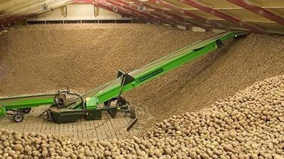 Россия удвоила импорт картофеля фото, иллюстрация