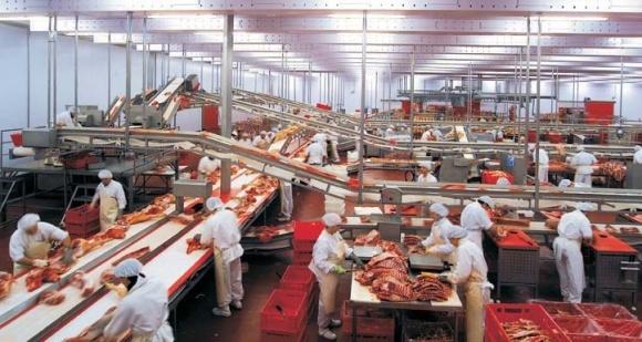 На Черниговщине построят мясокомбинат фото, иллюстрация