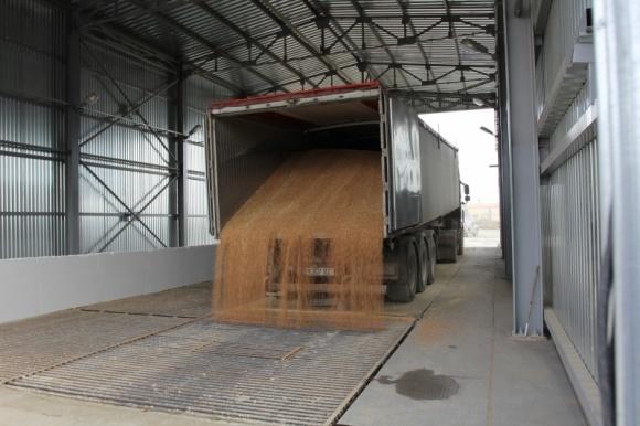 Trans Cargo Terminal повысила на 100% экспортные возможности фото, иллюстрация