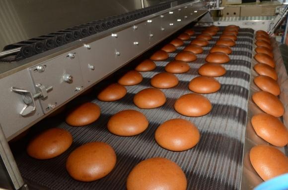 2019 року «Кулиничі» запустять завод із виробництва напівфабрикатів потужністю 150 тис. тонн на добу фото, ілюстрація