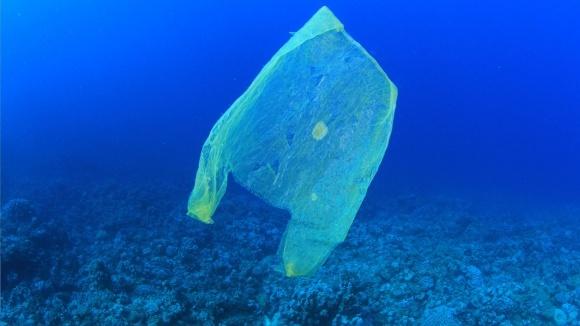 Через 30 лет в океане будет больше пластика, чем рыбы фото, иллюстрация